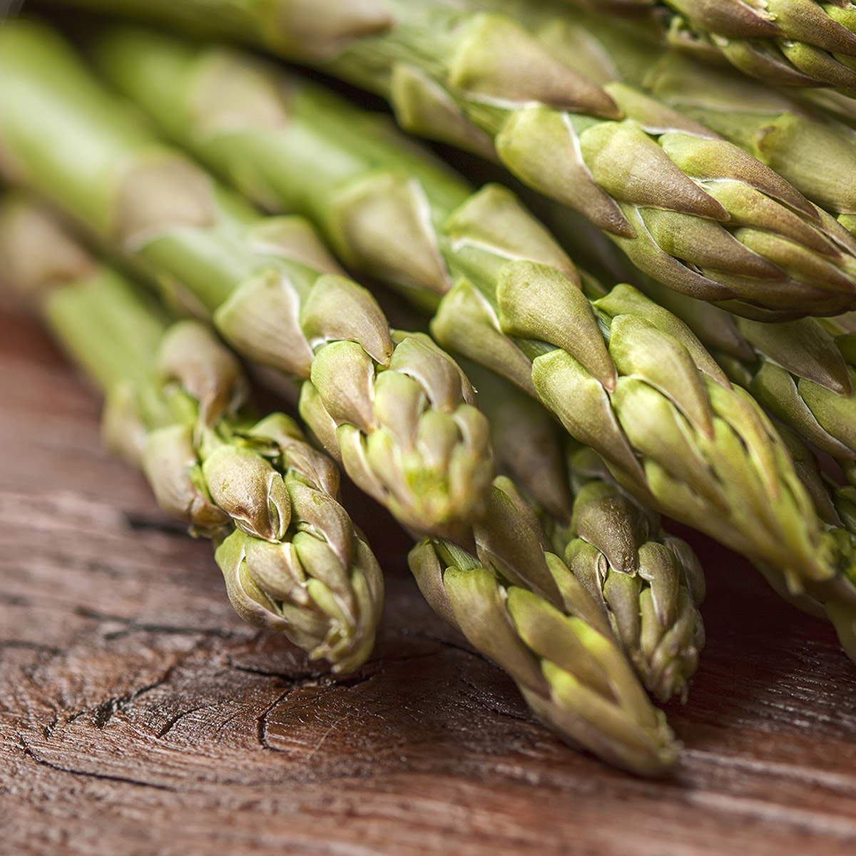 The Young Air Hawk Bouquet - Asparagus
