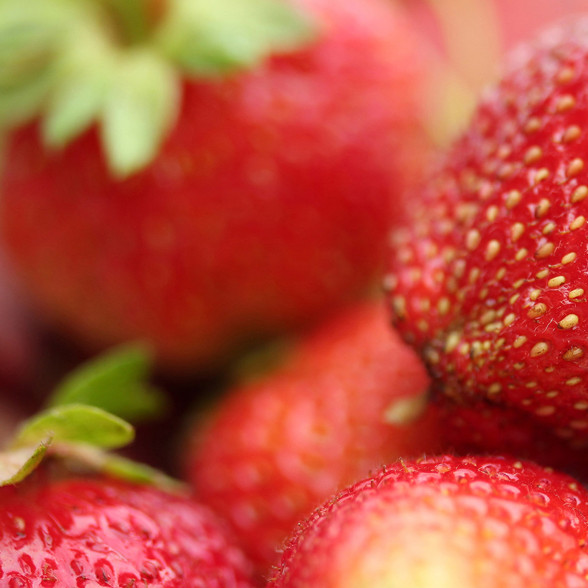 Pinot Grigio Bouquet - Strawberry