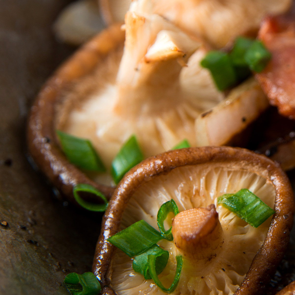 Pinot Noir Food suggestion - Roasted Mushrooms with Herbs
