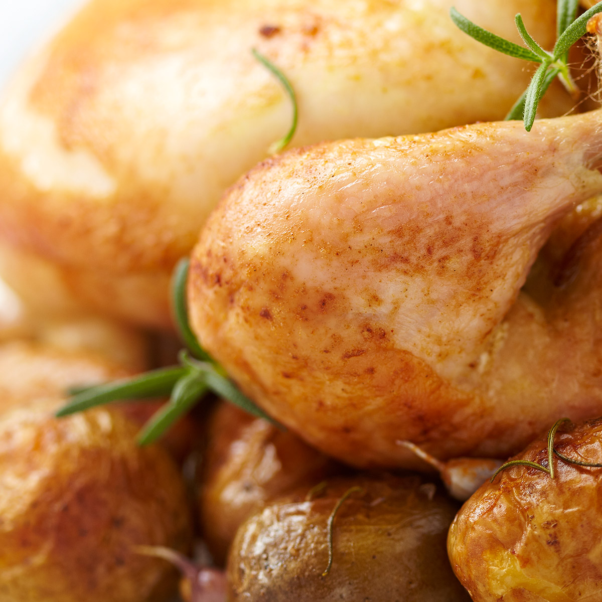 White Blend Food suggestion - Roast Chicken