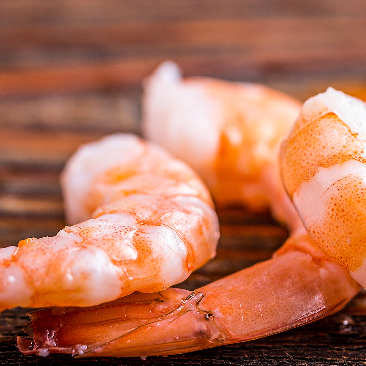 The Young Air Hawk Food suggestion - Prawns