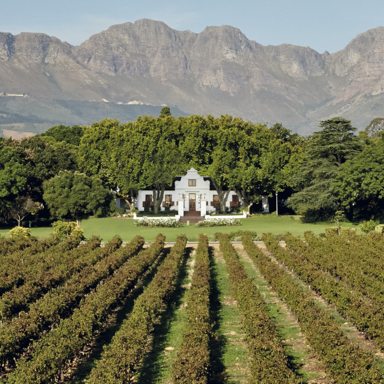 Daydreaming About A Harvest Experience In The Cape Winelands?  Enter To Win!